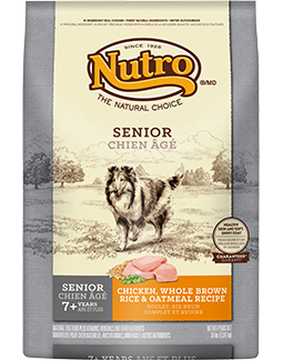 Who Carries Nutro Dog Food